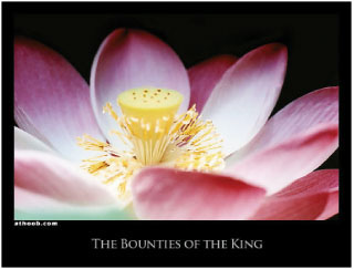 The Bounties of the King
